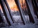 _DSC3228 Wintertime