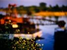 IMG004 Wasserfarben