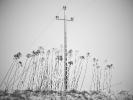 L1008404 Biały krzyż