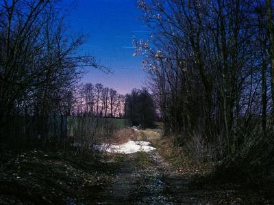 IMG031 Krajobraz z niewystemplowanymi rysami
